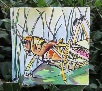 Day 124 (8/30/12): Grasshopper