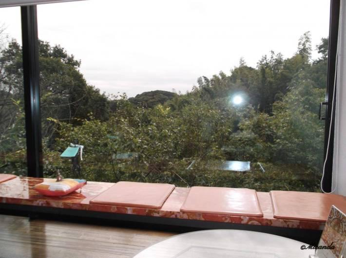 ハウスオブフレーバーズから見える人工物が一切ない鎌倉山の景色