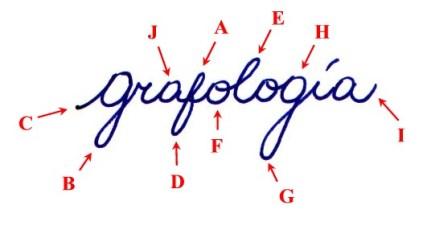 grafologia en el proceso de seleccion