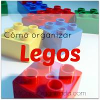 Cómo Organizar Legos