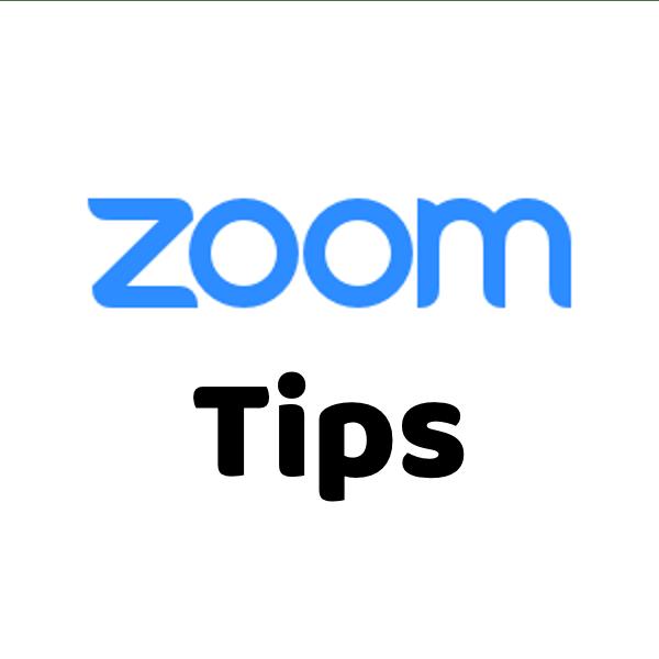 環境 Zoom 推奨