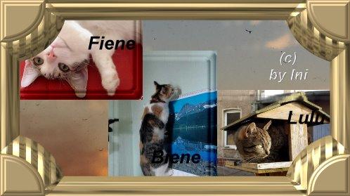 Fiene,Biene,Lulu
