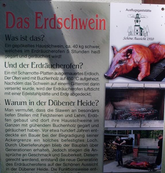 Erdschwein1