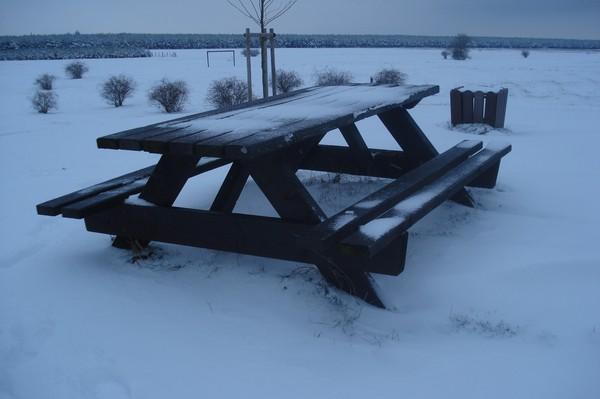 Goitzsche 1.1.2010