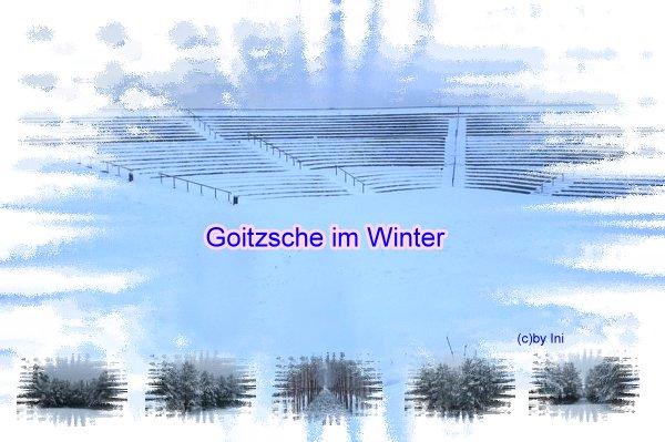 Bastelbild Goitzsche im Winter
