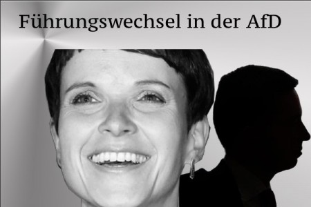 Petry-AfD