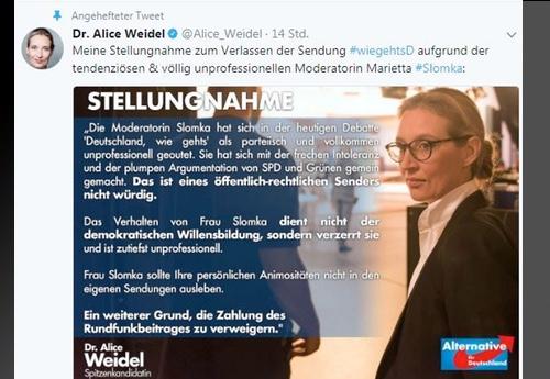 """Die wundervolle Alice Weidel (AFD): """"Bei Slomka kam ich mir vor wie in Nordkorea! ALLES VERLOGEN OHNE ENDE!"""""""