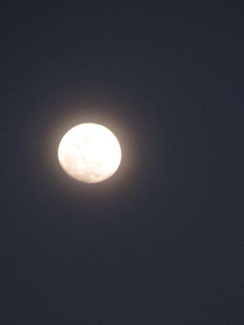 Луна над Иерусалимом