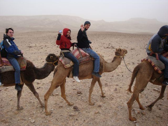 Прогулка на верблюдах