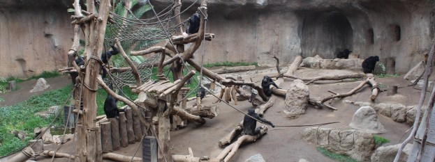 Leipzig Zoo 2014