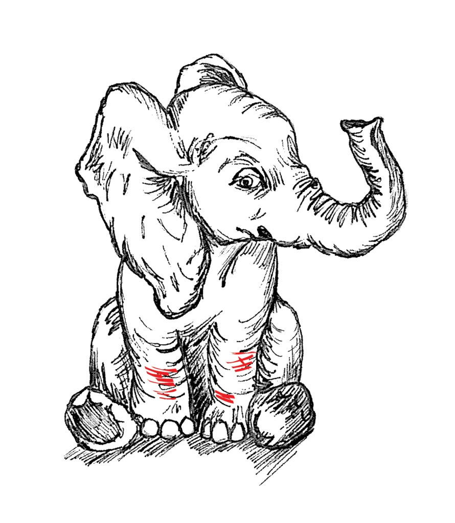 elephant self harm