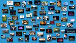 (C) Michaela Greil/MIG-Pictures e.U.