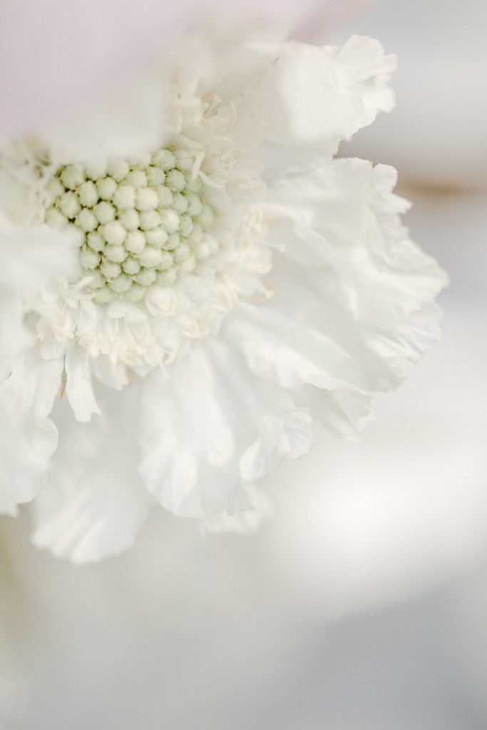 Blume Hochzeitsfloristik Tischdeko