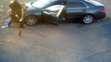 trooper sex hood car