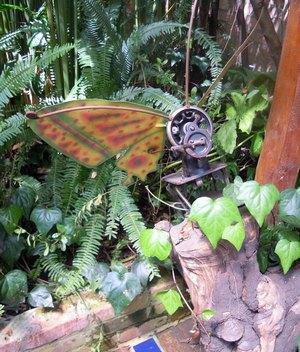 300 butterfly