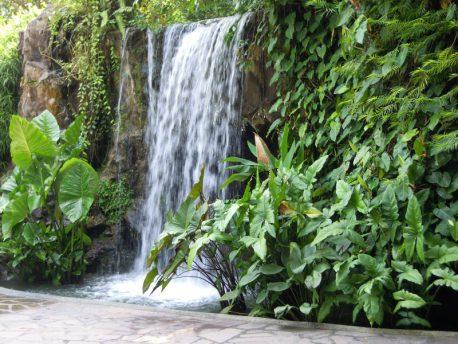 Waterfall in Botanical Gardens