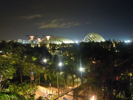 Cloud forest and domes at night