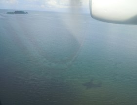 02 plane view