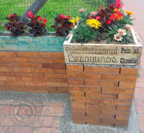 Chez Moi Coffee Shop Chia Colombia planters