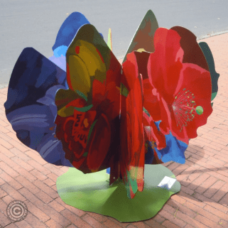 Passiflora by Catalina de Greif