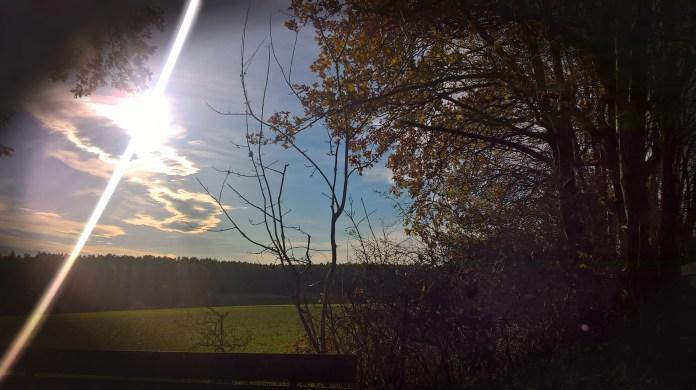 Herbstliche Weite