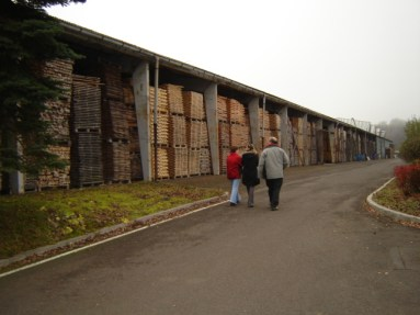 Wood inventory, Strunal, Luby, Czech Republic