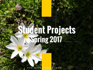 Student Projects, Spring 2017