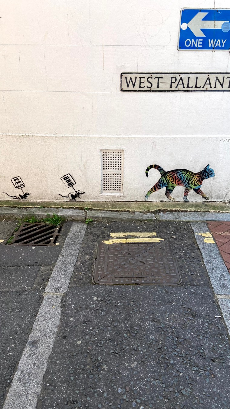 """Photo taken in Chichester City. First rat is holding a sign which says """"It's Priti awful"""". Second rat's sign says """"Kill the Bill"""" and there's a rainbow cat leading in the front."""