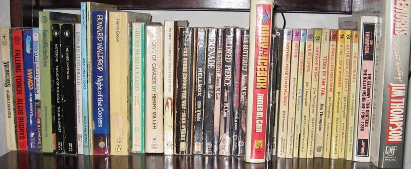 Bookshelf7