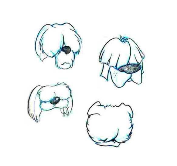 Chester-Dog-Heads-1