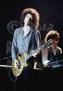 Mike Campbell solos with Benmont Tench in the shadows