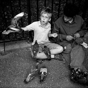 The Bird-boy of Tompkins Square Park