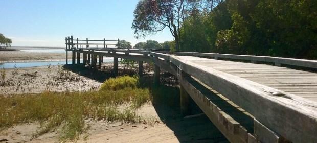 Mangrove Walk - Nudgee Beach - Boondall - Wetlands