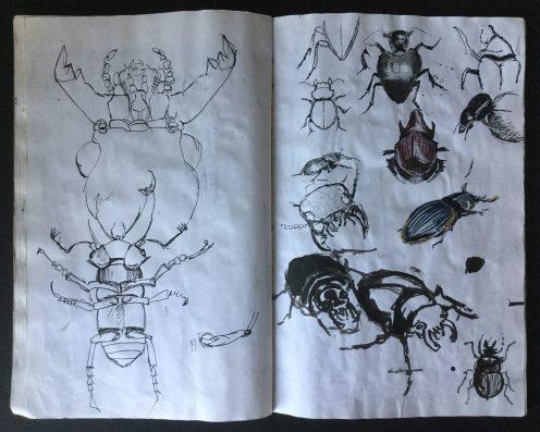 Metamorphosis Sketchbook, 14 x 9 in., 1985