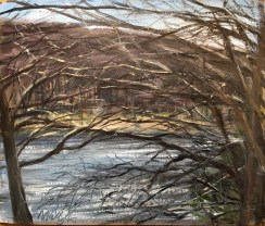 Through the Trees, Upton Lake, March 24th, 2019
