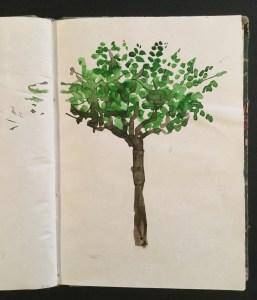 Tree, Ischia, 1997