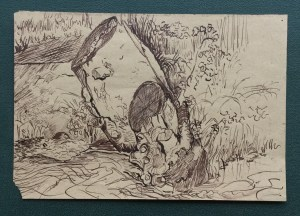 Tree Stump, Loughborough, 1981