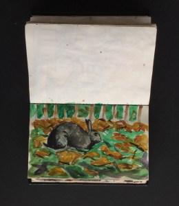 Sketchbook - Rabbit, Holland Park,1986