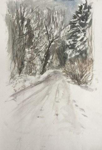 Driveway - December, Castine, 2010