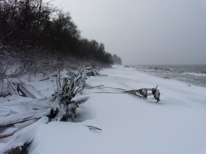 Beach, Penobscot Bay, December, 2010