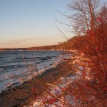 Beach, Penobscot Bay, December, 2010