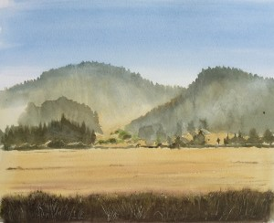 Tom's Place, Fields, Early Morning, 2008, Private Collection