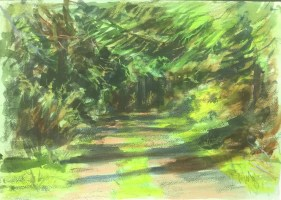 Driveway, Garden Cottage, Late Afternoon II, June, 2016
