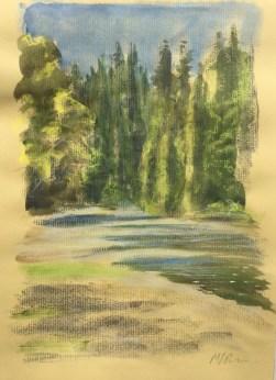 Gualala River, July 10th, 2019