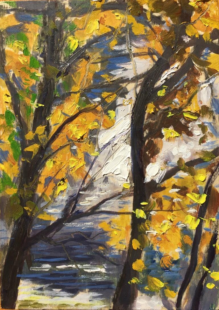 Foliage, October 19th, 2019