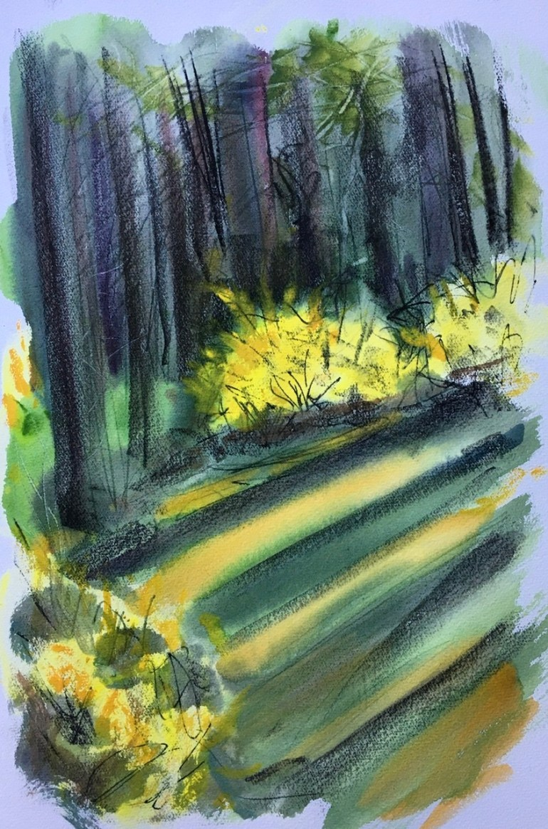 Forsythia and Trees II, Clinton Corners, Late Afternoon, April 18th, 2020