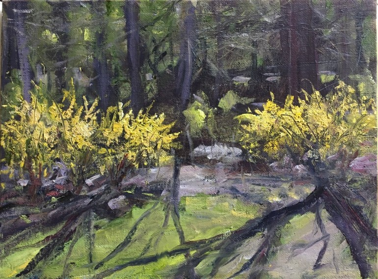 Forsythia and Trees I, Late Afternoon, April 11th, 2020
