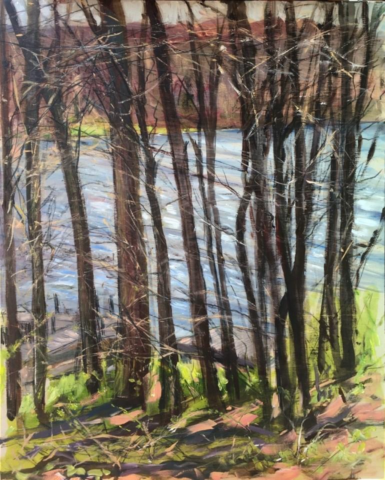 Upton Lake through the Trees, 12:15 pm, April 19th, 2020