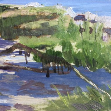 Detail - Trees and Shadows, Medomak River, July 5th,