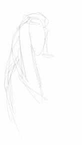 Sketch10211450